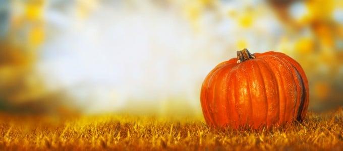 Partner-Webwatch Oktober Oktober Partner-Webwatch: Monatsrückblick Oktober Oktober 680x300